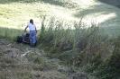 Golf-Sort-Grünanlagen, Biotopen
